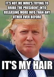 Pictures With Memes - 16 donald trump hair memes so funny you ll actually be grateful he s