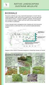 native plant definition leed building and native plant garden tours sarasota audubon