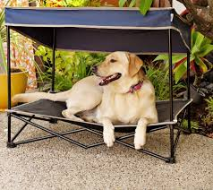 Cabelas Dog Bed Elevated Mesh Dog Bed Outdoor Raised Cat Pet Cot Canopy Shade