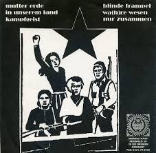 Wildfire Band Bremen by Schizophrenic Melodies