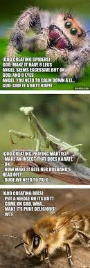 Spider Meme Misunderstood Spider Meme - nice spider meme spider best of the funny meme
