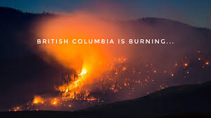 Wildfires In Bc July 2014 by Bc Wildfire In Udder News U2026