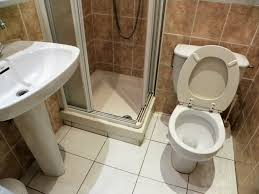 engaging white oval pedestal sink and toilet with small shower