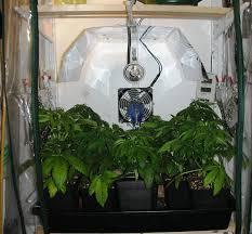 250 watt hid grow lights lighting for seedlings guerrilla growing uk420