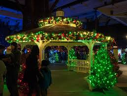 christmas lights at the zoo indianapolis here s how to vote for the indianapolis zoo in usa today s 10 best