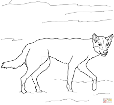 australian dingo coloring page free printable coloring pages