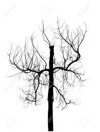 dead tree silhouette isolated on white background creepy tree
