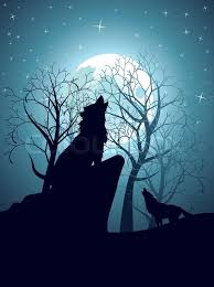 silhouette of the wolf howling at the moon in the forest at