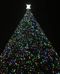 delray 100ft tree lighting tmd technology services