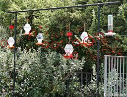 2277 best for the garden images on pinterest landscape design