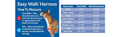 amazon app for black friday amazon com petsafe easy walk harness large black silver for