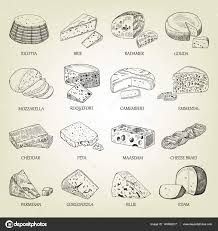 sketch of different cheeses icons vector illustration with