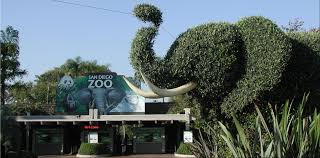 report san diego zoo group added 856m to economy in 2012 kpbs