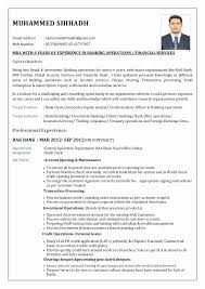 sle resume for bank jobs pdf reader resume format for banking sector for freshers beautiful ideas