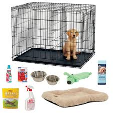 Cute Dog Products by List Of Puppy Supplies The Cutest Puppies Backgrounds And Cute
