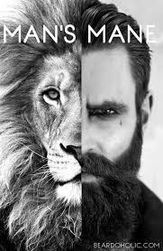 Beard Memes - best beard memes and quotes beardoholic