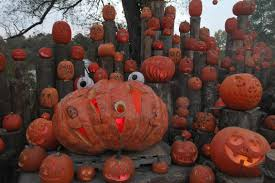 jack o lantern spectacular will light up the nights at roger