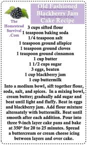 cake directions fashioned blackberry jam cake recipe the homestead survival