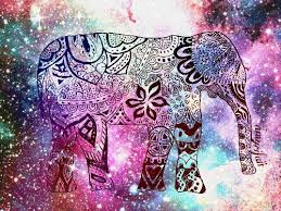 cool elephant wallpaper 15 best pin images on pinterest wallpapers background images and