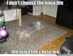 Ninja Meme - ninja life meme slapcaption com on we heart it