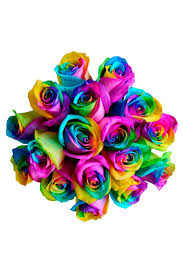 purple roses for sale rainbow for sale tie dye rainbow roses delivery