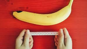 menurut penilitian inilah rata rata ukuran mr p pria di dunia