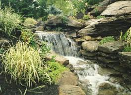 84 best custom water feature swimming pools garden ponds and