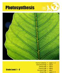 photosynthesis lesson plan clarendon learning