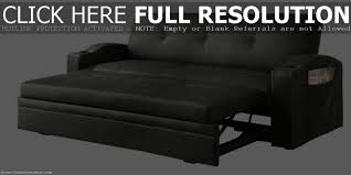 Pull Out Sectional Sofa Pull Out Sectional Moheda Sofa Bed Chair And A Half Ikea Small