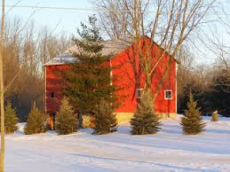 synch ro ni zing why are barns painted red or sometimes white