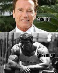Arnold Meme - arnold meme by mynameisbond memedroid