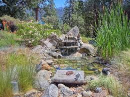 romantic restored 1945 bass lake cottage amid flowering gardens