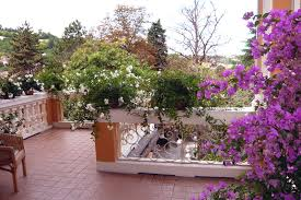 immagini di giardini fioriti salsomaggiore cronache on line