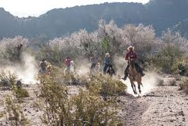 welcome to white stallion ranch guest ranch tucson az