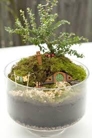 180 best miniature garden images on pinterest mini gardens