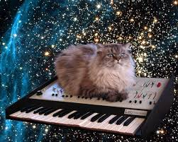 Keyboard Cat Meme - cat on a keyboard in space know your meme