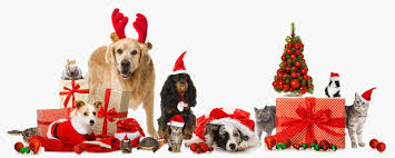 pet christmas holidays archives
