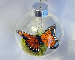 butterfly ornament monarch captive inside clear