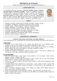Sample Resume For Document Controller by Financial Controller Resume Resume For Your Job Application