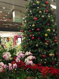 Christmas Decorations Online Singapore by Singapore Changi Airport Christmas Decorations 2013 Living In Sin