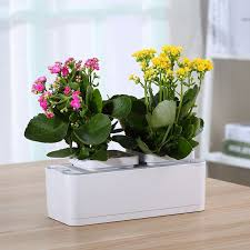 Upside Down Tomato Planter by List Manufacturers Of Growing Tomatoes Upside Down Plants Buy