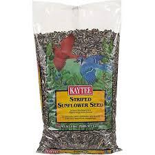 kaytee striped sunflower seed petco