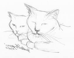 pictures animals pencil drawing easy pics drawings art gallery