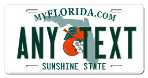 Florida Vanity Plate Cost Custom Florida License Plate Customized Personalized Auto Tag