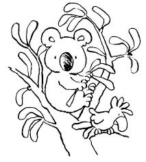 koala bear with bird coloring page color luna