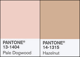 spring 2017 pantone 2 good claymates pantone spring 2017 fashion colors pale dogwood