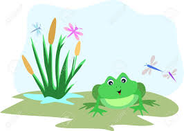 frog with dragonfly sky frame royalty free cliparts vectors and