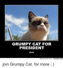 25 Best Memes About Grumpy - 25 best memes about grumpy cat for president grumpy cat for