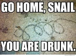 Go Home Meme - go home snail you are drunk weknowmemes