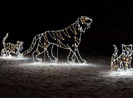 national zoo christmas lights where are washington dc s best christmas lights displa zoo lights